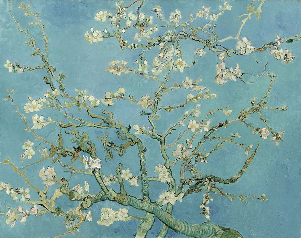 Van Gogh Almond Branches