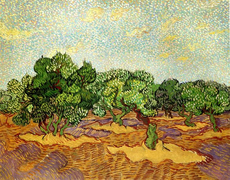 Van Gogh painting of the Olive Groves in Saint Remy